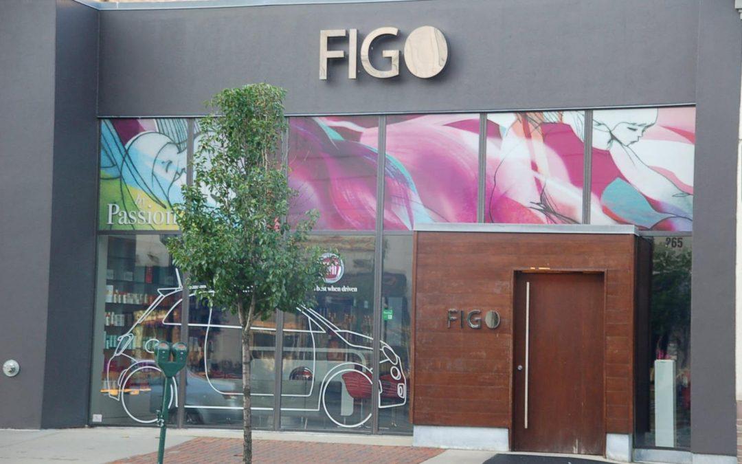 FIGO Dimensional Sign Stainless Steel Letters LED illumination – Birmingham Michigan